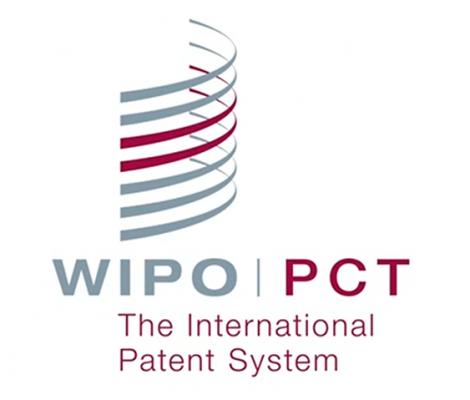 PCT Patent in Vietnam
